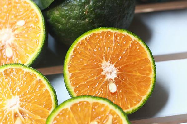 Giá cam sành hiện nay tại Bình Dương